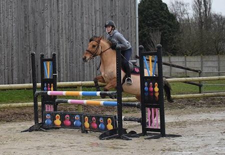 Cours d'équitation pour adultes Abbeville