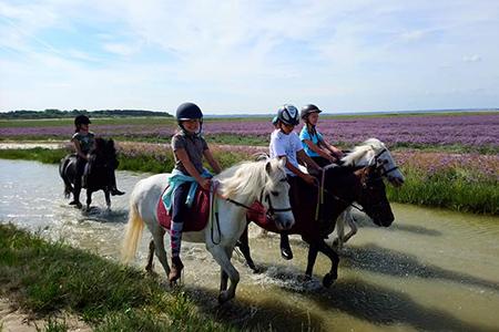 Cours d'équitation pour enfants Abbeville