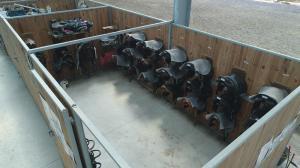 centre equestre lamotte buleux abbeville